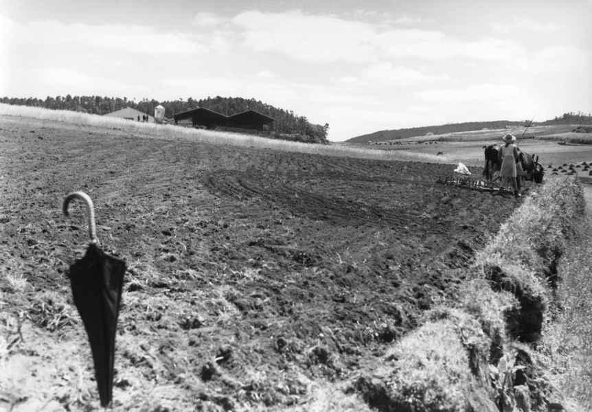 Perspectiva dos límites da Cooperativa San Cristovo de Tapia. Ames (A Coruña), 1970